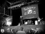 BUCKCHERRY LIVE AT THE HELLFEST 2014 SAMEDI 21 JUIN (2)